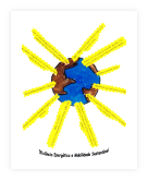 19-Colégio Monte Flor
